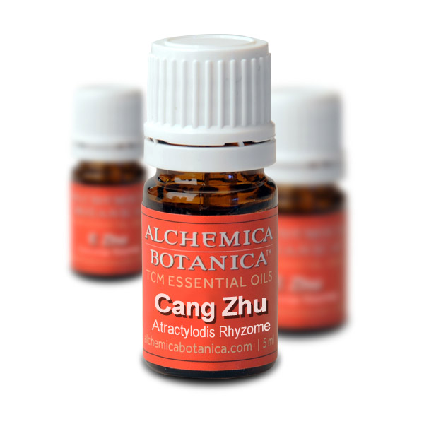 "Cang Zhu (""Black or Red Essence"") Essential Oil"