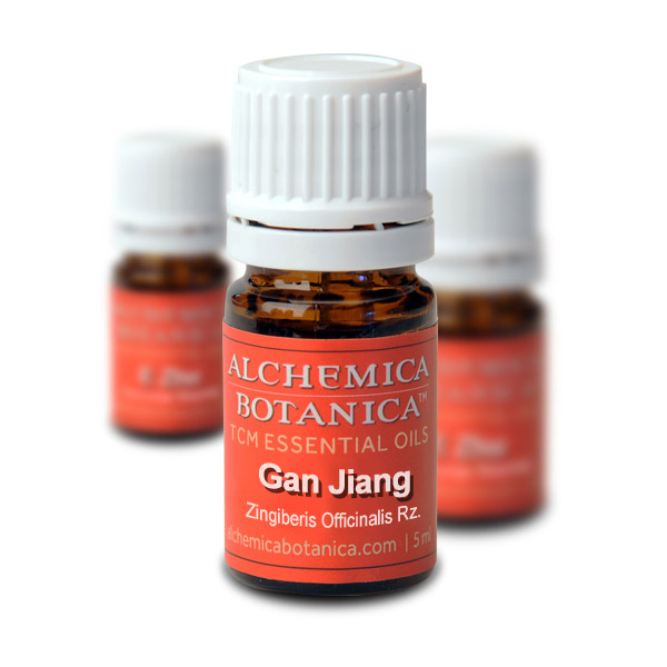 Gan Jiang (Dried Ginger Rhyzome) Essential Oil